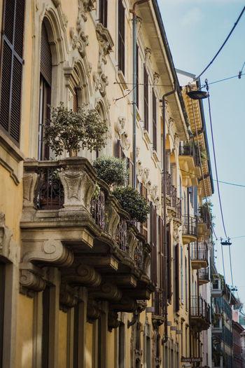 Milano 😍 Italy Milan Milano cityscapes Follow4follow TeamCanon Citykillerz Bravophotos Eyem Best Shots EyeEmNewHere Photomood Photooftheday Likesforlikes Followme City Architecture Façade Palace