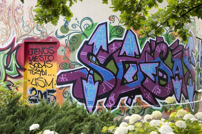 2015  Art Building City Life Colored Walls Colors Graffiti Graphite Graphite Art Multi Colored No People Text Urban Art UTENA Wall Wall - Building Feature Graffiti Art Graffiti The World City Colours