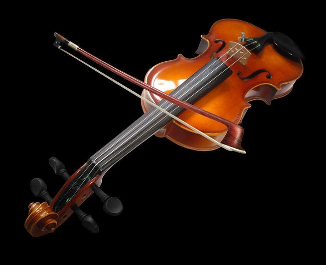 Violin Black