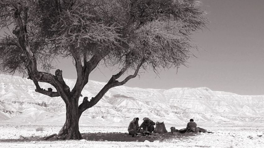 Siesta in the Desert of Sinai under the Acacia Light And Shadow Blackandwhite Eye4black&white  The Traveler - 2015 EyeEm Awards EyeEm Nature Lover Edge Of The World Ägypten  Beduines Indigenous  Indigenouspeople Highnoon Resting Tree Mountains Miles Away