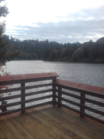 Outdoors Scenics Lake No People Trees And Nature Tranquil Scene Water Relaxation Fishing Dock Signs Of Autumn
