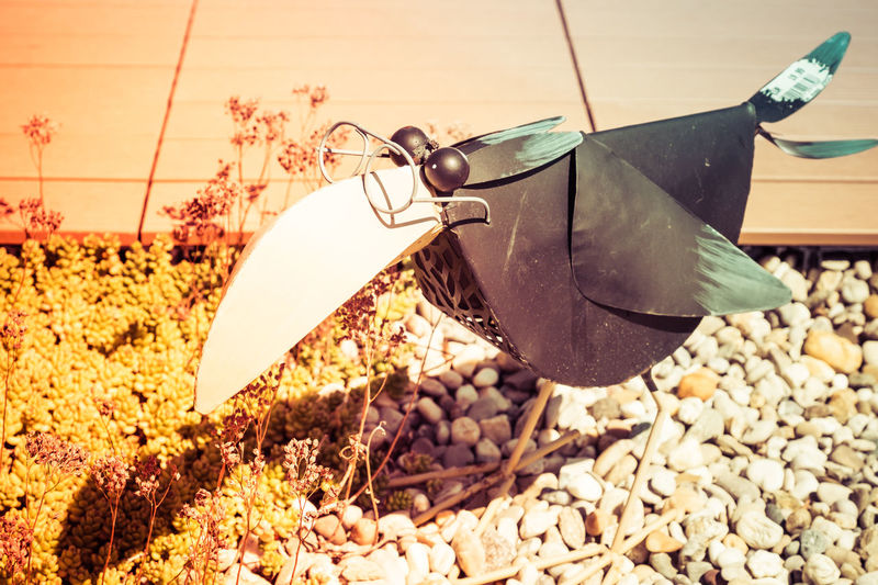 Bird Sculpture Glasses Close-up Day Decoration Food Garden Metal Art Metal Sculpture Nature No People Outdoors