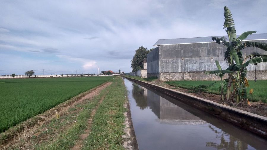 Canal amidst field against sky