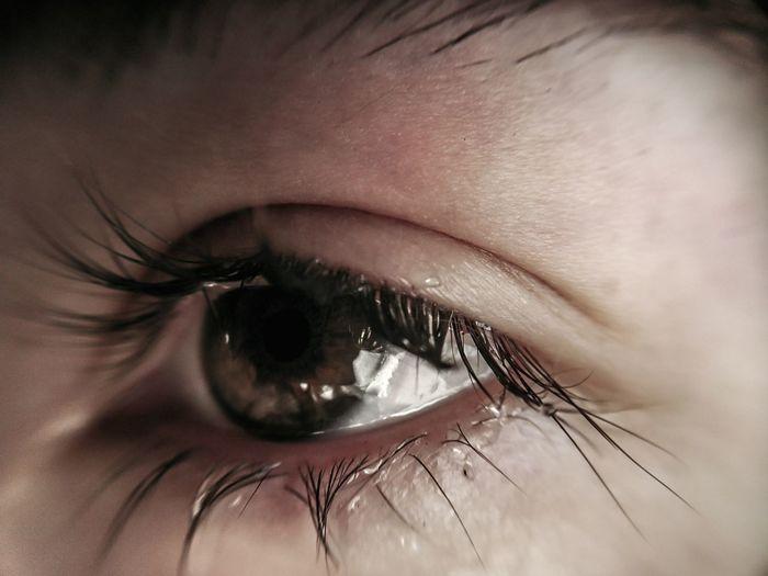 Wet eye Cry Crying Sad Skin Human Skin Iris Eye Human Eye Eyeball Eyelash Eyesight Eyebrow Human Eye Beautiful Woman Iris - Eye Beauty Sensory Perception Young Women Macro Mascara Pistil Detail Body Part Extreme Close-up Focus