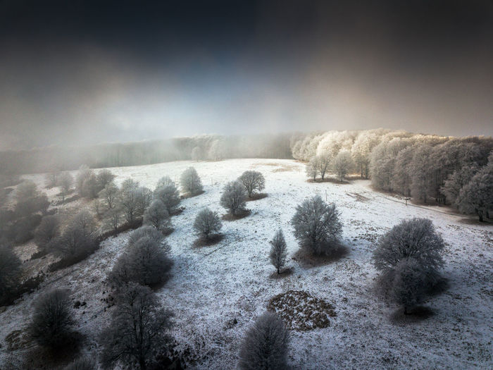 Nature No People Winter Day Land Beauty In Nature Sky Snow Scenics - Nature Plant Cold Temperature Tranquility Environment Tranquil Scene Landscape Tree Non-urban Scene Idyllic Outdoors Mist Misty Sunlight Fog Scenics Tree