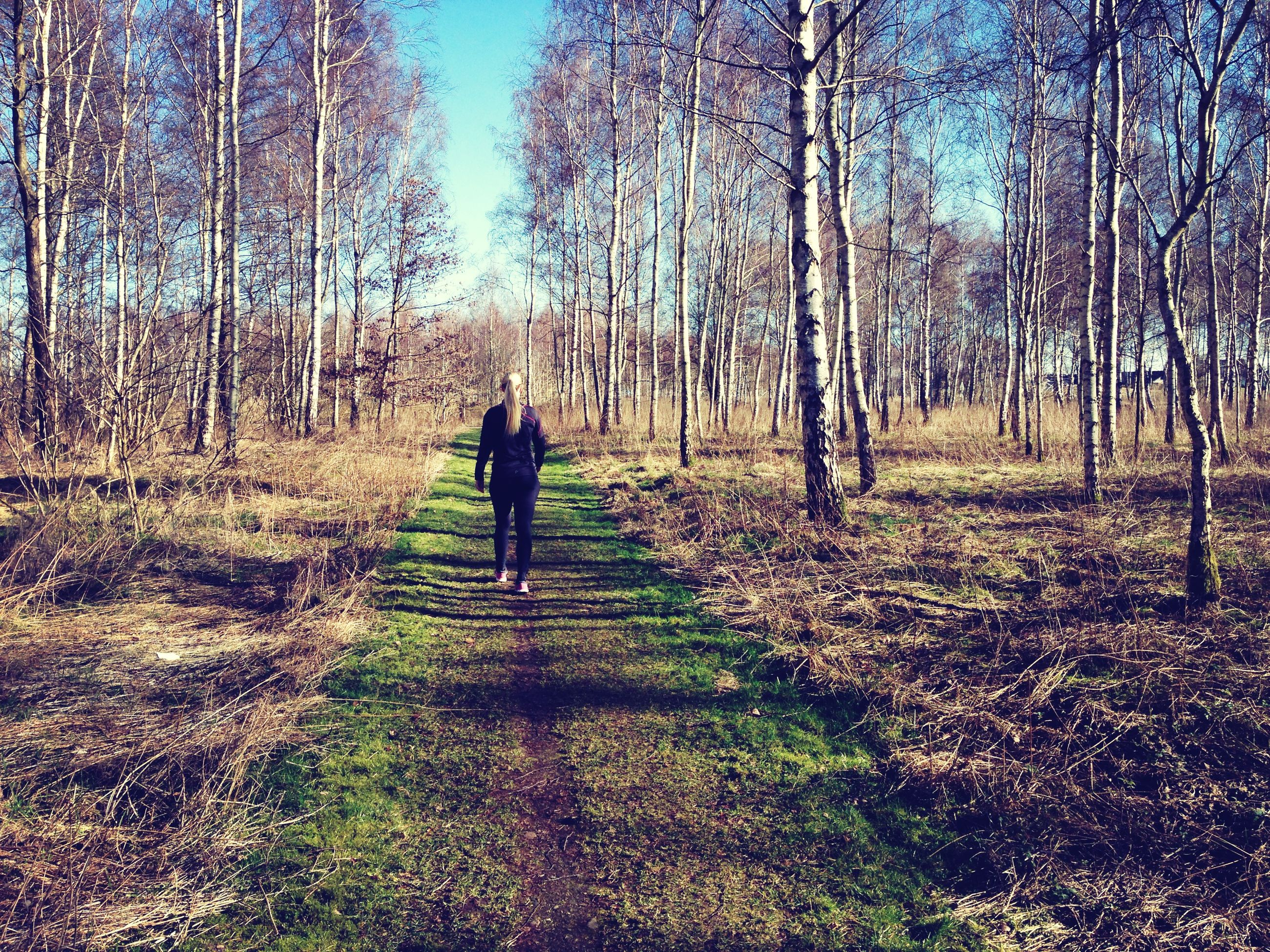tree, rear view, walking, full length, lifestyles, leisure activity, tranquility, forest, the way forward, men, nature, standing, growth, tranquil scene, grass, landscape, tree trunk, person