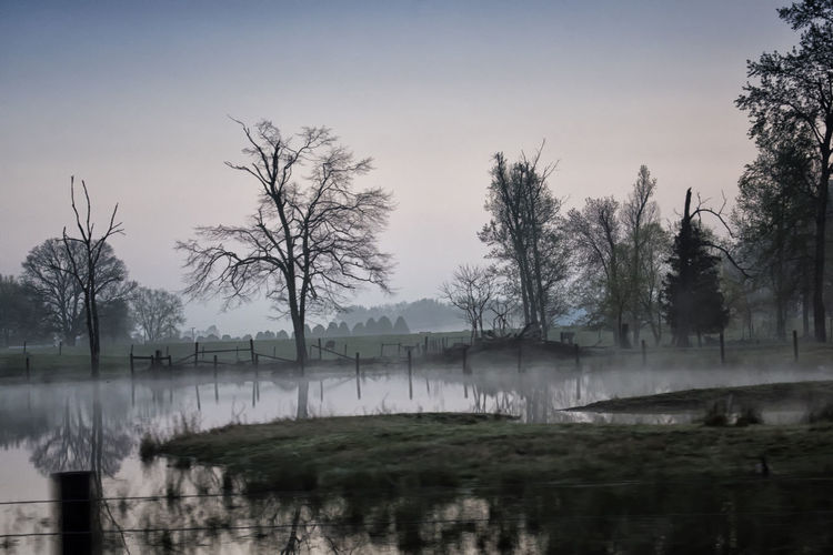 A foggy morning in Scottsville! one of my fave spots. The trees are starting to die which is a pity but they make for great subject matter! Beauty In Nature Fog Foggy Morning Lake Landscape Morning Light Morning Sky Nature Nikon D810 Reflection Scenics Tranquil Scene Tranquility Tree Water