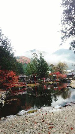 曇天の神々しさ いい日旅立ち Pray For Japan 朝 奈良 天川村 Love Japan Autumn Water_collection 紅葉