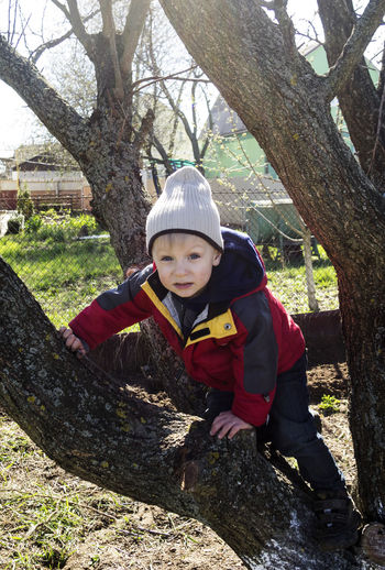 Portrait of boy climbing on bare tree at park