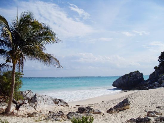Sehnsucht. Mexico Tulum Rivera Maya Palm Tree Sea Ocean Water Beach Horizon Over Water Shore Rock Formation Travel Tourism Holiday Vacation Beauty In Nature Coastline Waves Tranquil Scene Sand Nature Relaxation