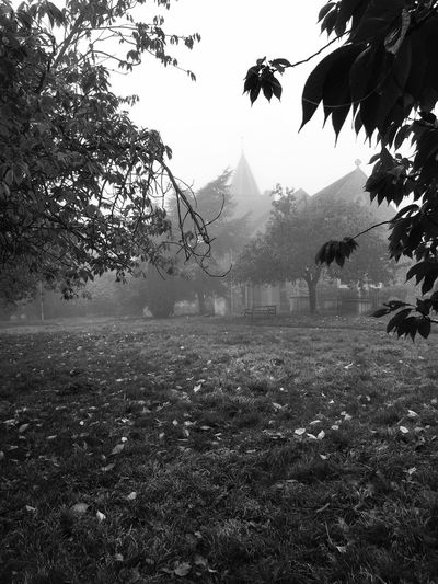 Church Yard Church Fog Cold Autumn