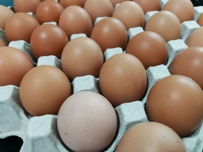 Organic Eggs from little farmEyeEm Selects Egg Food Egg Carton Full Frame Food And Drink Brown Raw Food Protein Healthy Eating Freshness No People Market Close-up Backgrounds Healthy Lifestyle Outdoors Day Brackground