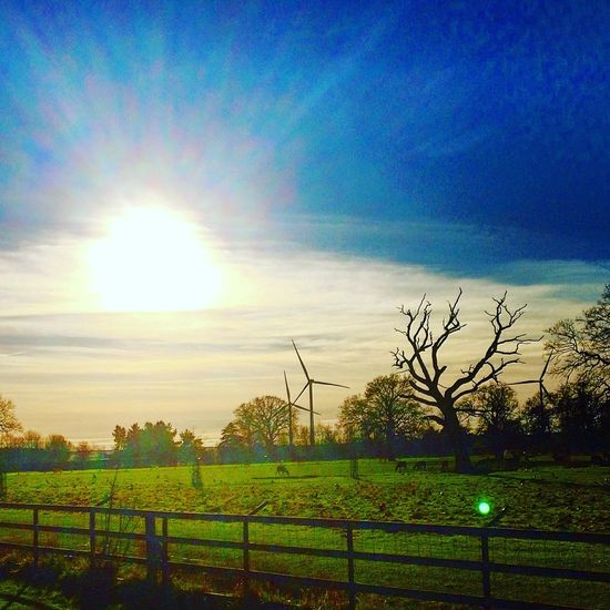 Lotherton Hall Winter Sunshine with Windfarm Aberford West Yorkshire