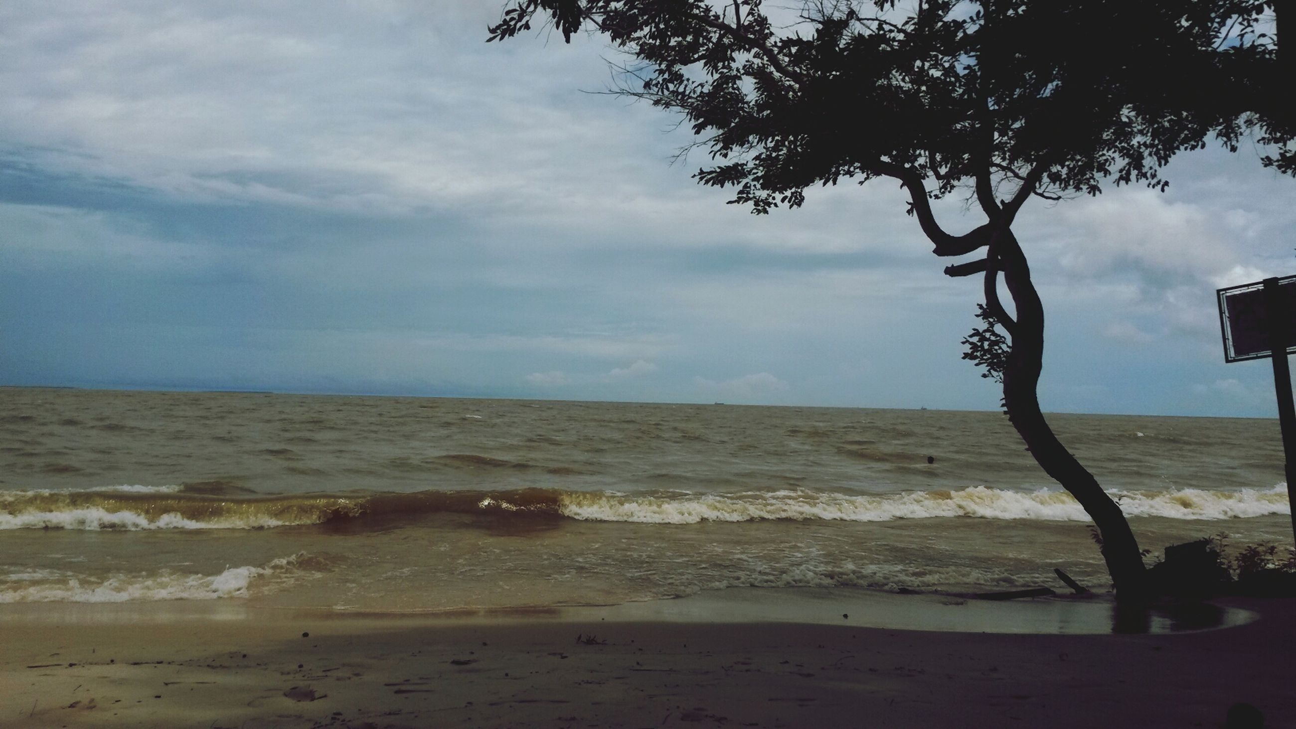 sea, sky, beach, horizon over water, water, shore, cloud - sky, tranquility, scenics, tranquil scene, beauty in nature, sand, nature, cloud, tree, cloudy, idyllic, coastline, day, outdoors
