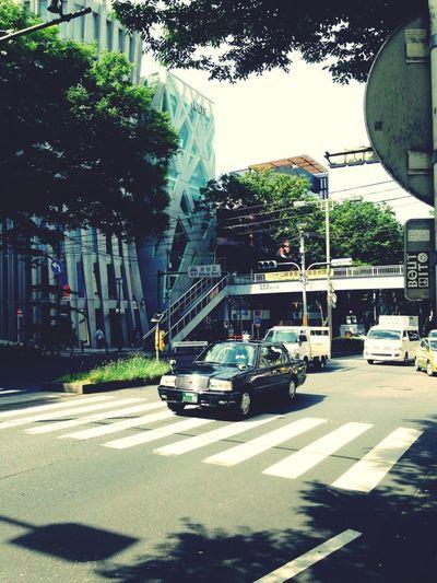 Sunday street Omotesando