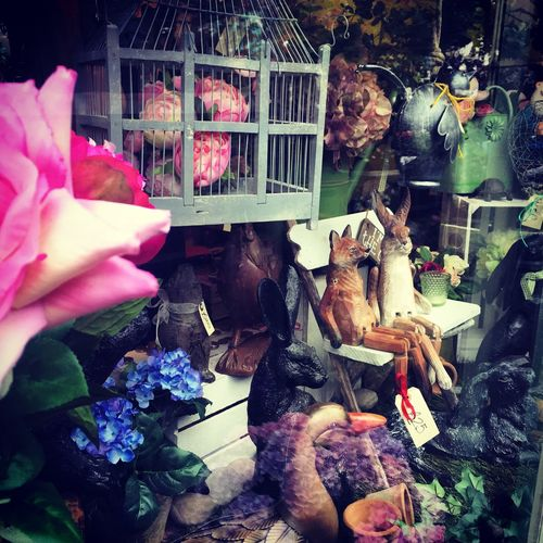 Flowers London Diferent Market Enjoying Life Traveling