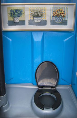 Blue Close-up Day Decoration Different Green Color No People Outhouse Toilet Unusual Fine Art Photography