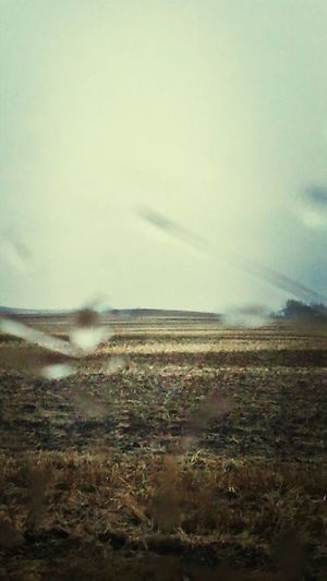 Rain Relaxing Prarie Manitoba