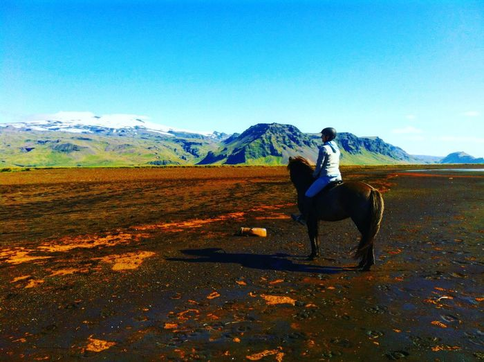 Woman Riding Horse On Field Against Blue Sky