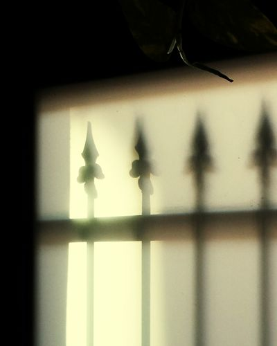 Busy old fool of the sun drops by, or maybe it's an angel at my door. I didn't answer - too busy taking the photograph. Light And Shadow Contre-jour Getting Creative Fleeting Moments