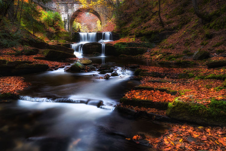 Waterfall under the bridge Relaxing River Motion Water Nature Leaves Autumn Fall Stone Waterfall Outdoors Forest Underwater Long Exposure Flowing Water Bulgaria Flowing No People Idyllic Orange Color Blurred Motion Bridge - Man Made Structure Scenics - Nature Plant Beauty In Nature Rock Day Tree Change Stream - Flowing Water Running Water