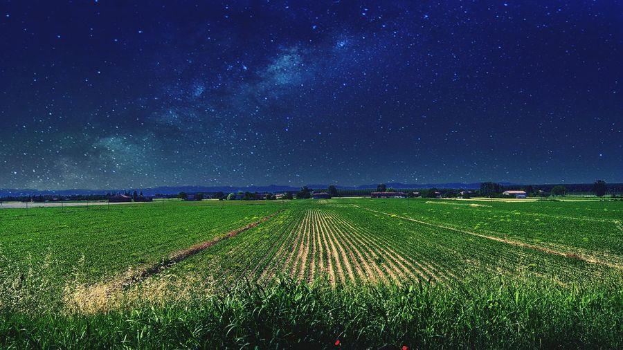 Le stelle sulla campagna. Star Campaign Sky Skylight Nightlife Nightlandscape Lumia640xl Lumiaphotography Farm Landscape