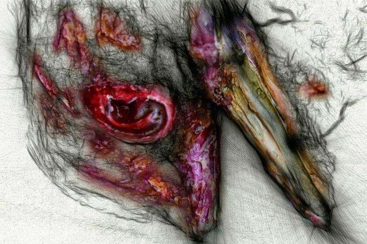 Sculpture Sketch Details Art, Drawing, Creativity Art Secret Garden Drawing Painting Art Installation Dead Animals
