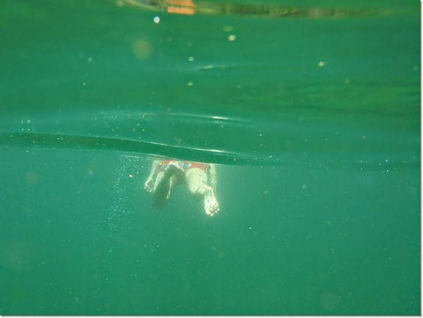 ตาม.. Sport One Person Water Underwater People Swimming Aquatic Sport Day Extreme Sports Adult Adults Only Outdoors