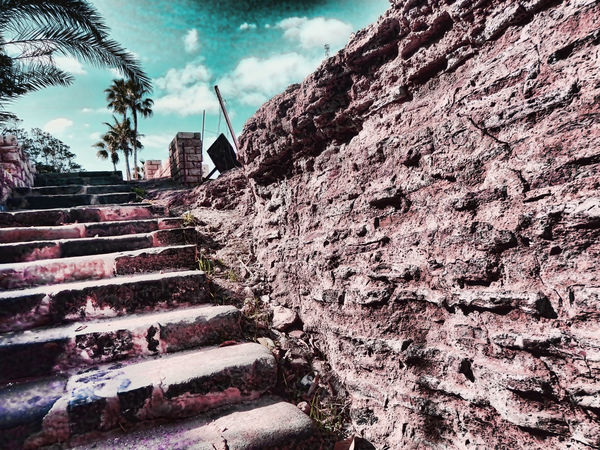 Alexandria Egypt Architecture Building Exterior Built Structure Cloud - Sky Day Nature No People Outdoors Roman Amphitheater Sky Staircase Steps Steps And Staircases Tree