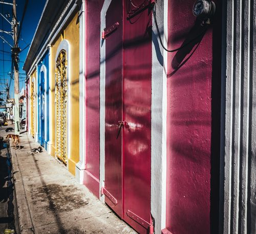 Streets of Color Sunny Summer Travel Photography Travel Destinations Stray Dog Colorful Dominican Republic Fujifilm_xseries Photographyisthemuse Streetphotography Sidewalk Yellow Fuscia Building Exterior Architecture Built Structure Door Day No People Outdoors
