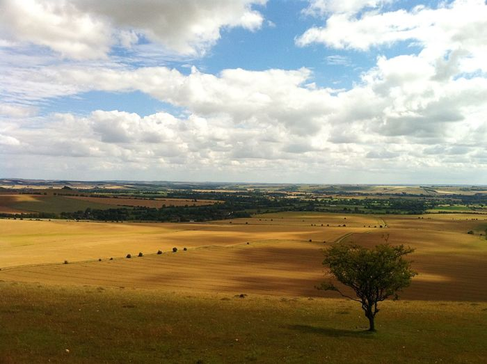 Wiltshire plains Landscape Field Cloud - Sky Scenics Tranquil Scene No People Tree Agriculture