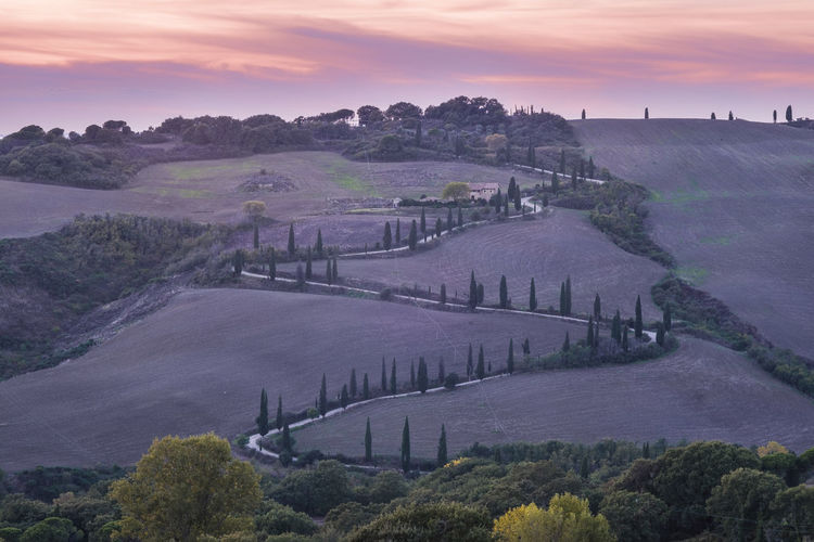 Colour Dawn Of A New Day Horizontal Italy La Foce Landscape Nature No People Outdoors Siena Tuscany Tuscany Tuscany Countryside Tuscany Landscape Cypress Trees