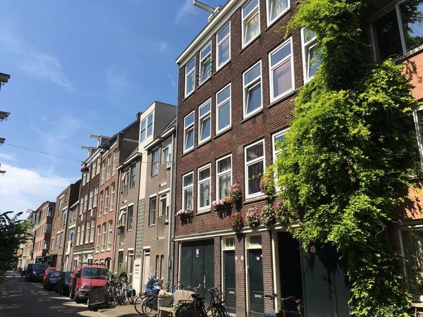 Jordaan xD Amsterdam Architecture Blue Sky Building Exterior Built Structure City Day Holland IPhoneography Jordaan Netherlands No People Outdoors Sky Store Summer Travel Destinations Tree Urban Road