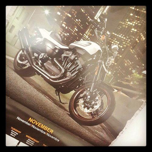 The month November my Harleydavidson Calendar shows the XR1200 Beast On Wheels Motorcycles InstaGood InstaMood