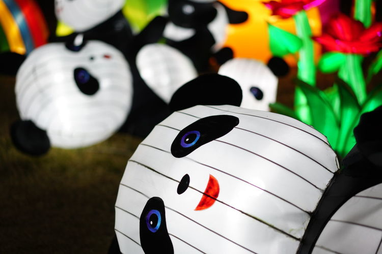 Stripes Animal Light Replica Animal Representation Animal Themes Energy Light Panda Fake Animal Show Fake Pola Light And Shadow Light Animal Show Light Show Panda Lantern Panda Light Show