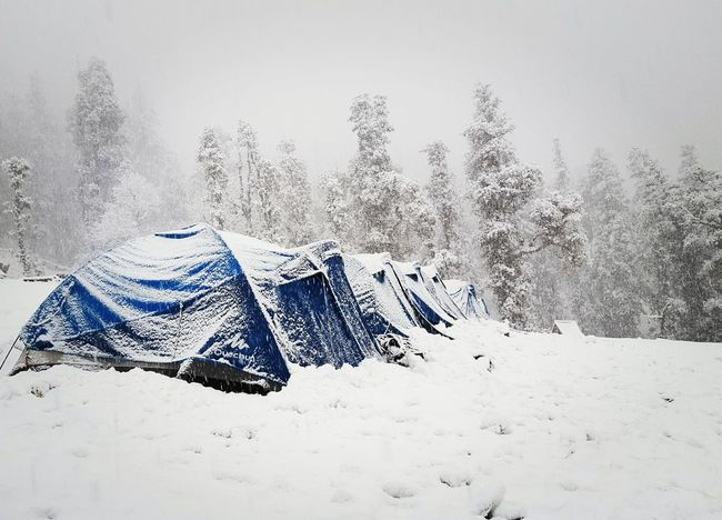 sugar icing Camp Snowfall Snow On Trees Snow ❄ Snow Covered Camp Site Himalayas Trek Tent PhonePhotography
