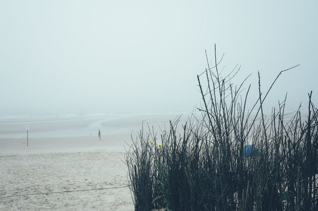 Beach Beauty In Nature Day Langeoog Nature Outdoors Scenics Sea Sky Tranquil Scene Tranquility