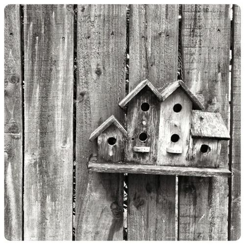 Living, Back Garden Highland Birdhouse Black & White Garden