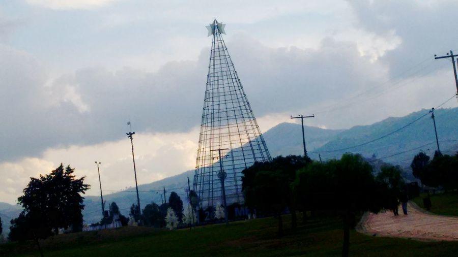 Parque El Tunal Flores, Bosques Y Naturaleza. Cielo Y Nubes  Navidad Arboles , Naturaleza Arbol.Arbol. Arbol De Navidad Bogota,colombia.