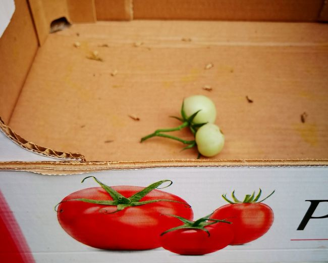 Tomatoes Vegetables Cardboard Box Green Tomatoes Green Tomatoes Red Tomatoes EyeEm Selects Food And Drink Red Healthy Eating Food Indoors  No People Freshness Close-up
