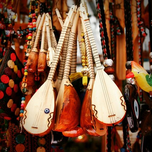 Stringed Instruments For Sale At Store