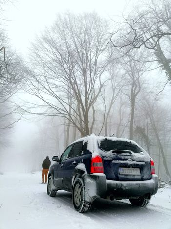Snowy road Hyundai Hyundai Tucson Naturelovers Nature Photography Nature_collection EyeEmNewHere Forest Winter Snow Cold Temperature Weather Car Land Vehicle Extreme Weather Snowing Nature Tree Outdoors Day
