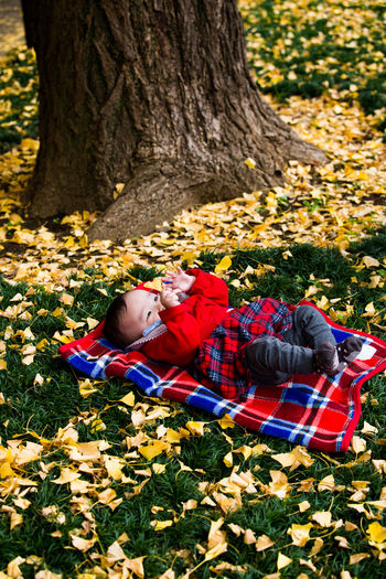 High angle view of baby girl lying at park during autumn