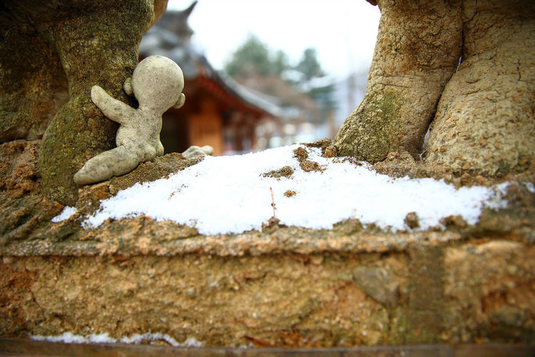 Baby sculpture on a tree which covered in snow at a park. Art Arts Culture And Entertainment ArtWork Baby Beauty In Nature Close-up Cold Temperature Craft Day Decoration EyeEm Gallery Nami Island Nature No People Outdoors Sculpture Sculptures Sky Snow South Korea Tranquility Travel Destinations Travel Photography Tree Winter