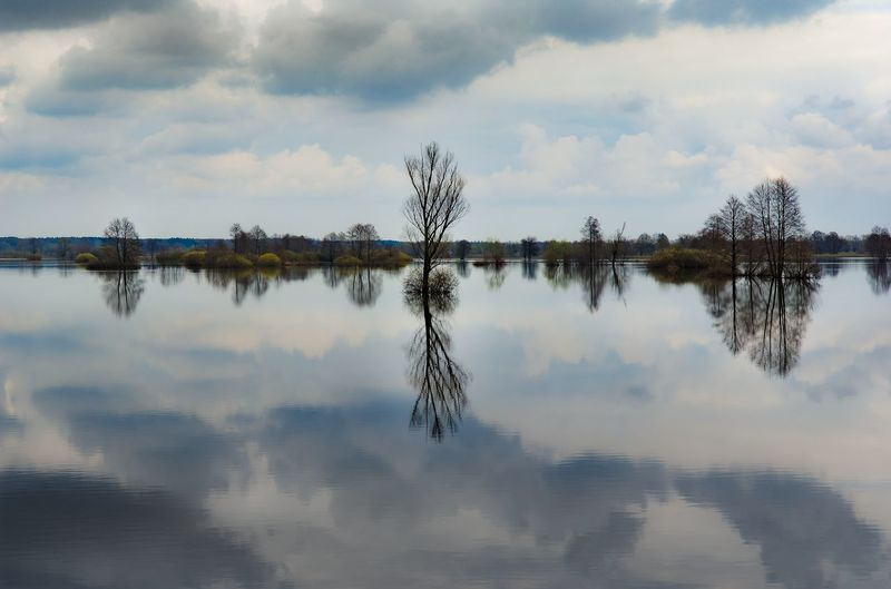 wonderful reflection... EyeEm Market © Eyeem Marketplace Landscape Photography Mirroring Nature Collection Photography In Motion Photography Is My Escape From Reality! Spiegelung Tree And Sky Views Landscape #Nature #photography Nature Beauty Photography #photo #photos #pic #pics #tagsforlikes #picture #pictures #snapshot #art #beautiful #instagood #picoftheday #photooftheday #color #all_shots #exposure #composition #focus #capture #moment Photography By Me Reflection In The Water Reflection Lake Reflection Perfection  Reflection Photography Reflection_collection Reflections Reflections And Shadows Reflections In The Water Tree Area View Into Land Viewpoint