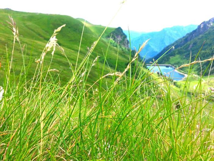 Montagna Natura Lago Montagne
