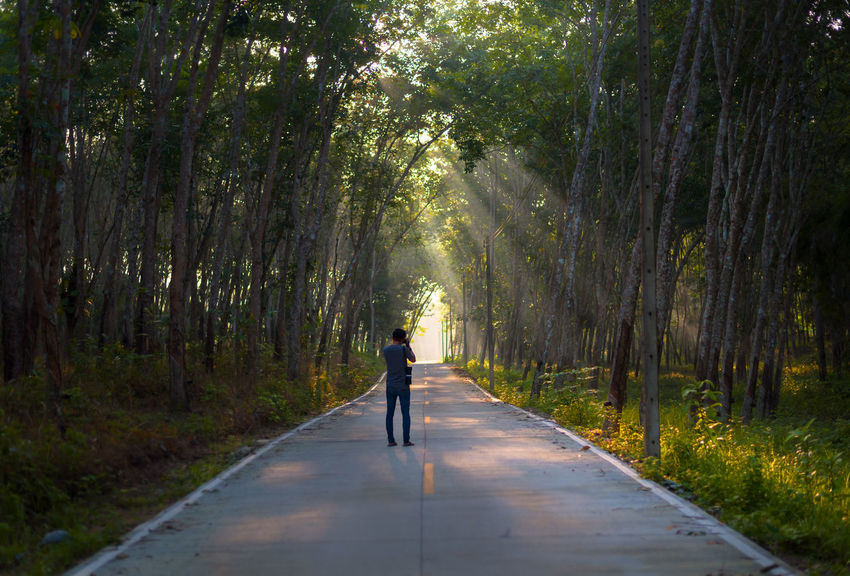 Nakhon Si Thammarat Thailand Travel Forest Lifestyles Photographer Rear View Road The Way Forward Tree Walking