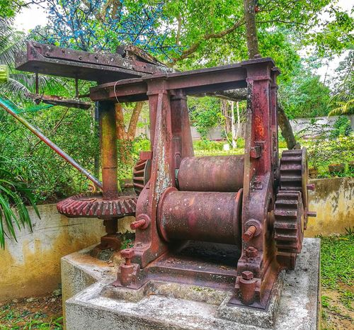 INTOSAN, the old system of milling sugar cane. P9photography Cebu Philippines Milling Sugar Sugarcane Intosan History Relic Relic From The Past Tree
