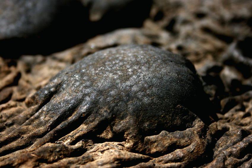 Close-up Nature Bubble Mineral Asphalt Outdoors Bitumen Black