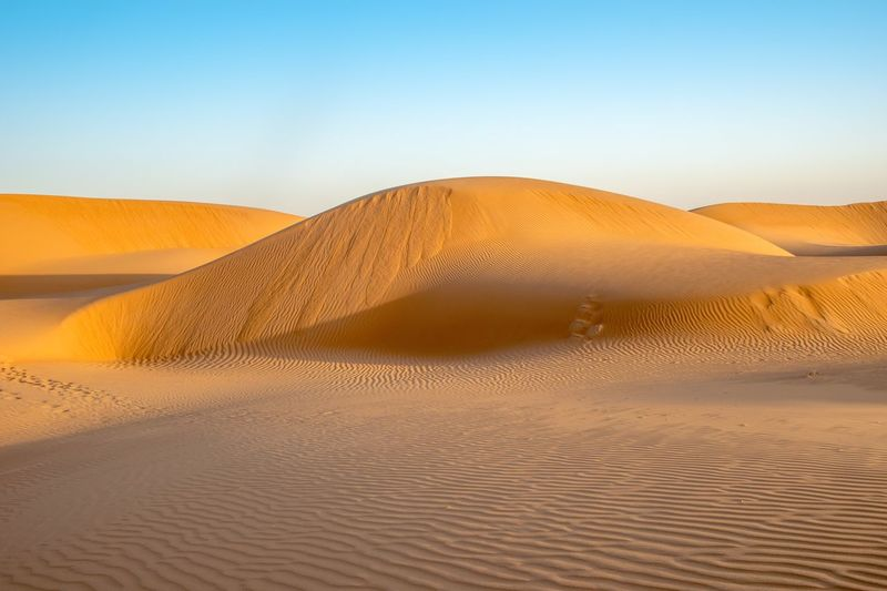 Wahiba Sands Dunes at sunrise Sunrise EyeEm Selects Sand Dune Land Sand Desert Landscape Scenics - Nature Arid Climate Tranquility Tranquil Scene No People Nature Non-urban Scene Beauty In Nature Remote Day